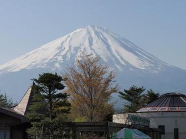 Fuji09050201