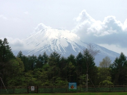 Fuji100522