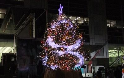 Tree10121605_2