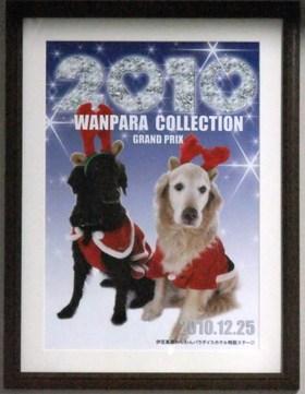 Wanparaphoto2010