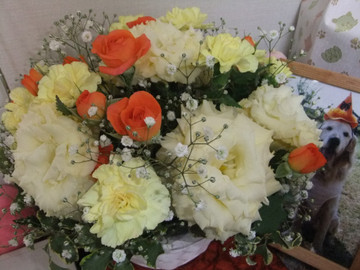 Flower120501