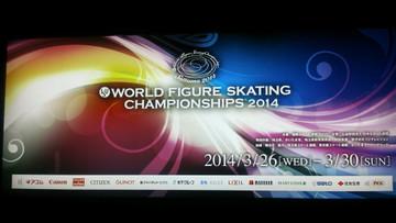 Skate14032601_2