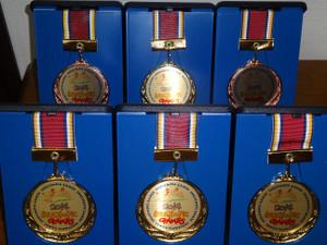 Medal201411