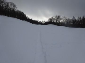 Snow14122904
