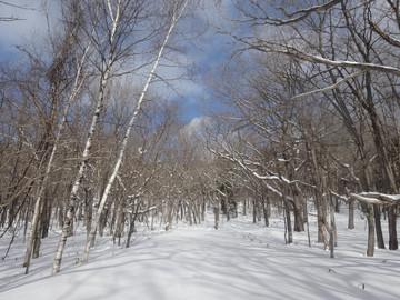 Snow15010204_2